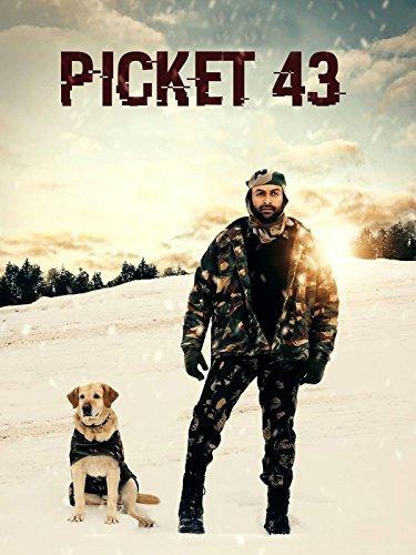 Picket 43 (2015)