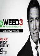 The Marijuana Revolution (2015)