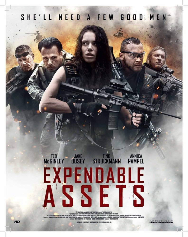 Expendable Assets (2016)