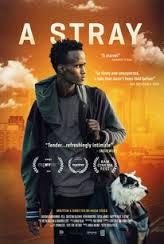 Смотреть трейлер A Stray (2016)