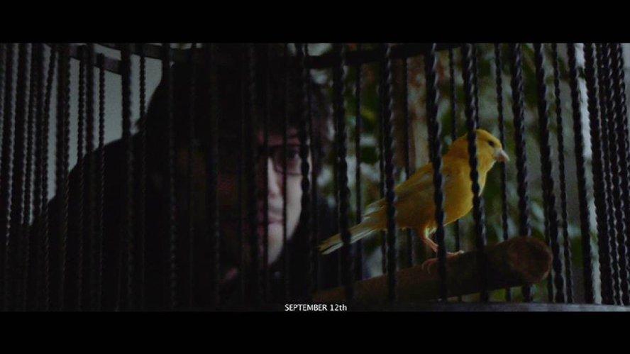 Little Yellow Bird (2016)