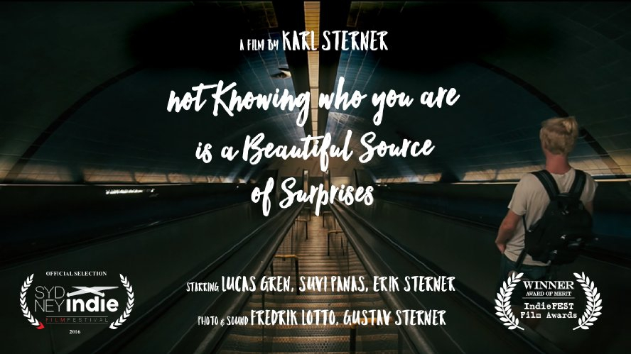 Not Knowing Who You Are Is a Beautiful Source of Surprises (2016)