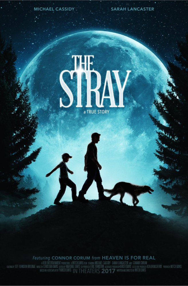 Смотреть трейлер The Stray (2017)