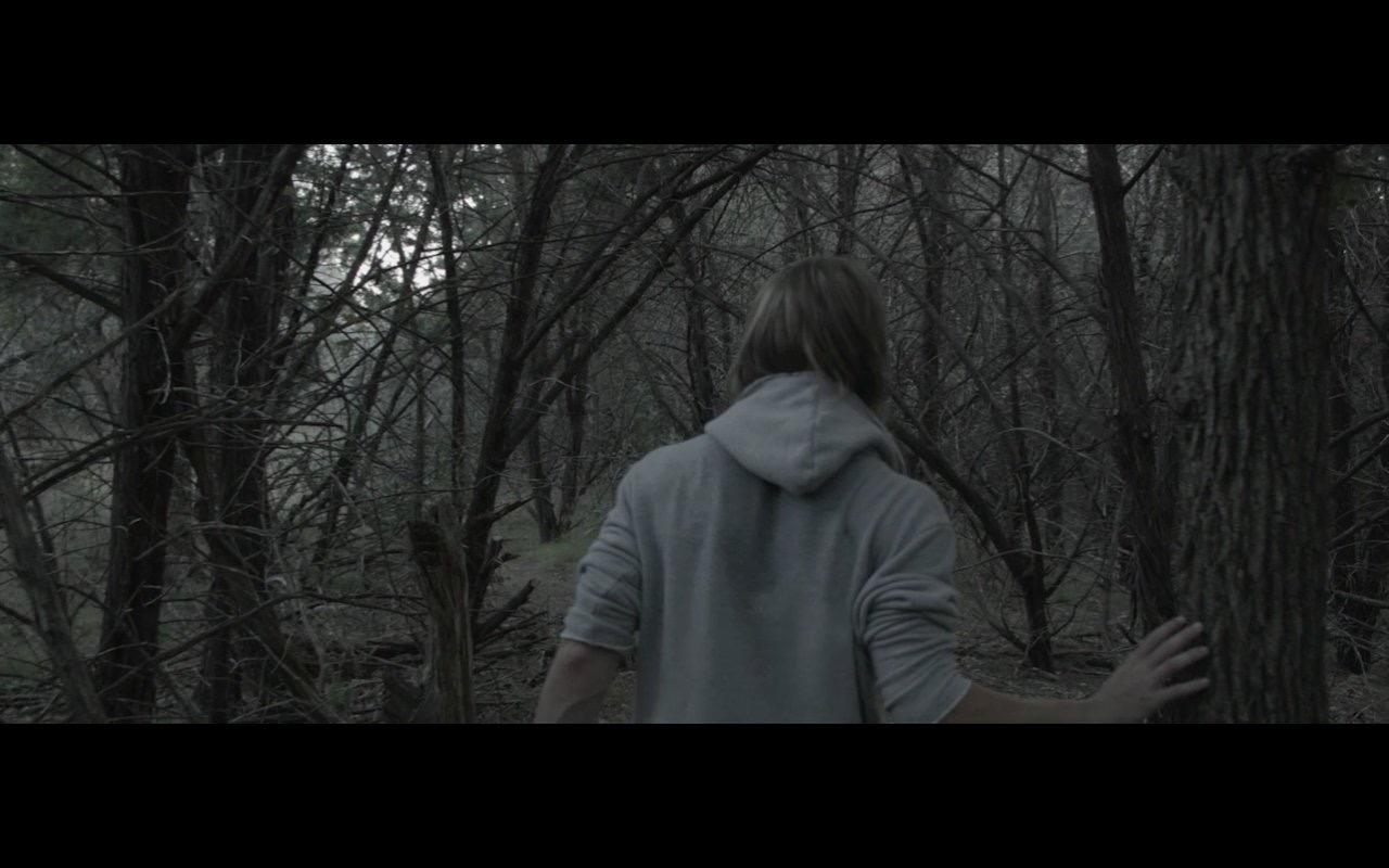 Смотреть трейлер Wind (2017)