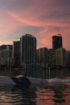 Смотреть трейлер Miami Rogue (2017)
