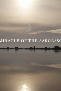 The Miracle of the Sargasso Sea (2018)