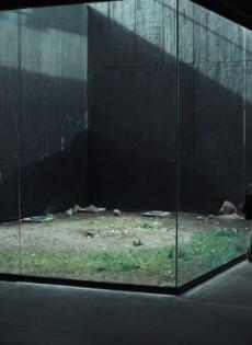 Memoria (I) (2021)